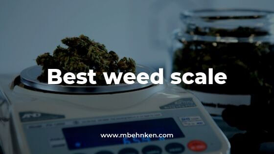 Best Weed Scale