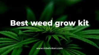 Best weed grow kit
