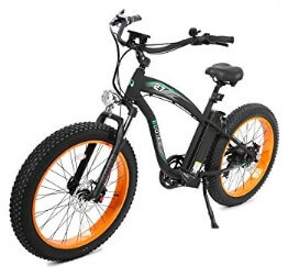 Ecotric Electric Bike