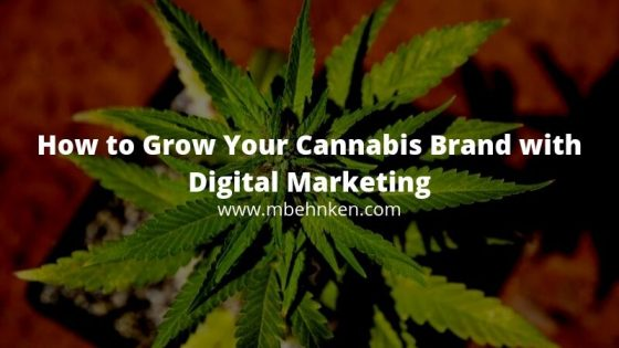 cannabis digital marketing