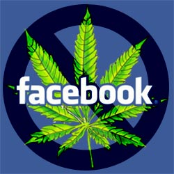 facebook cannabis ad policies