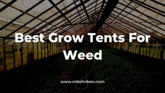 Best Grow Tent For Weed