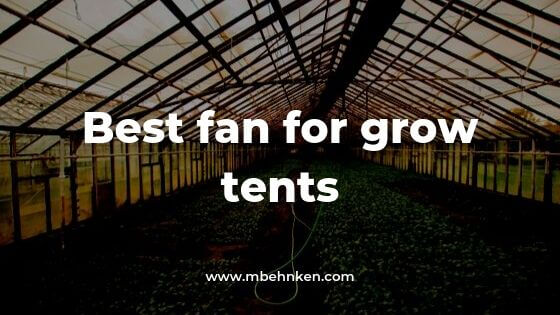 best grow tent fan