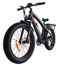 Addmotor MOTAN Electric Bike